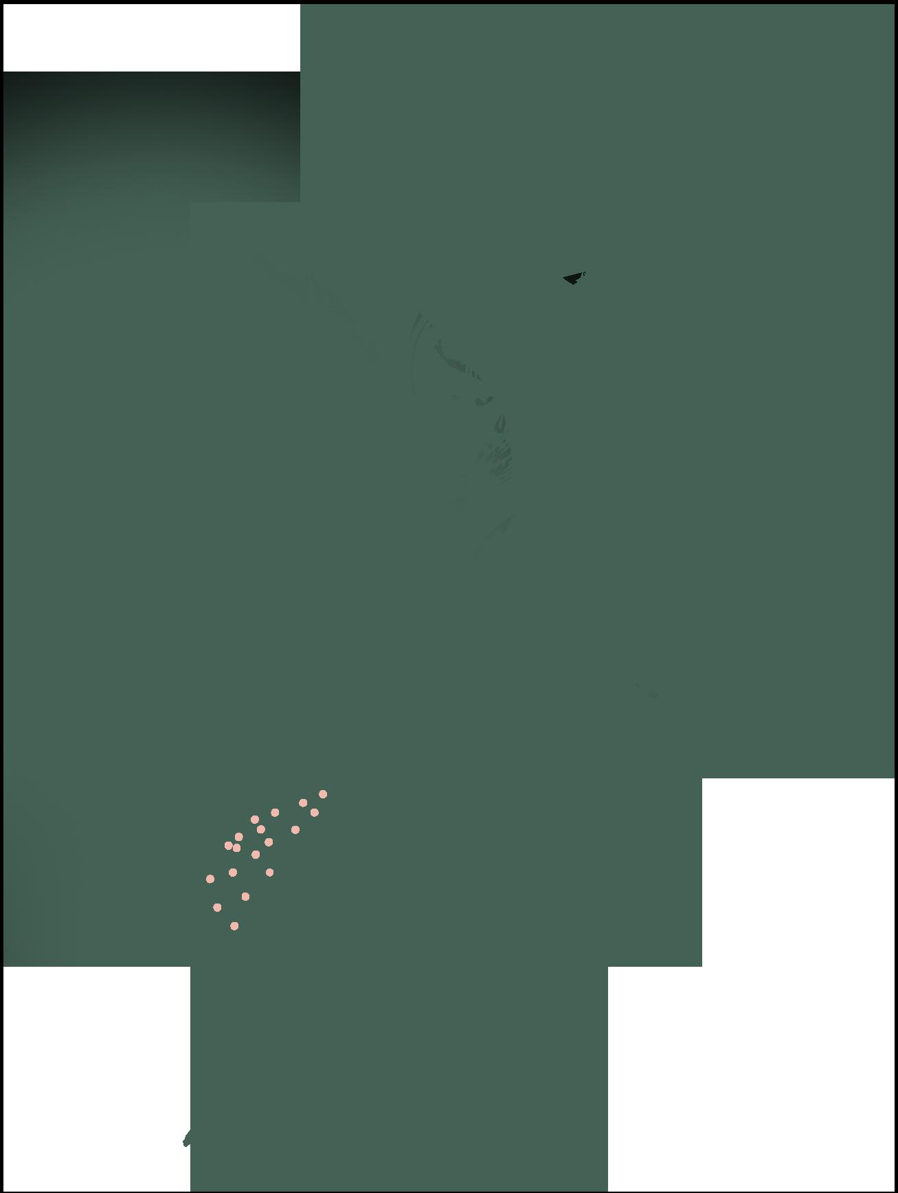 kitogreen-sustainable-alternative